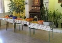 Gyümölcs és zöldségkóstoló